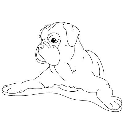 Coloring Pages Of Boxer Dogs How To Draw A Dog Fun Drawing