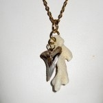 Valentine's Day jewelry: Earrings, Necklaces, and Bracelets. Featuring Fossil Shark Teeth, Coral, and Costa Rican shells.