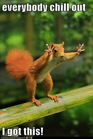 trust me, this is my first ginger squirrel