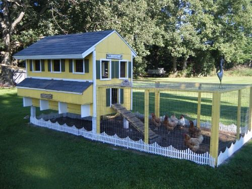 White picket fence coop