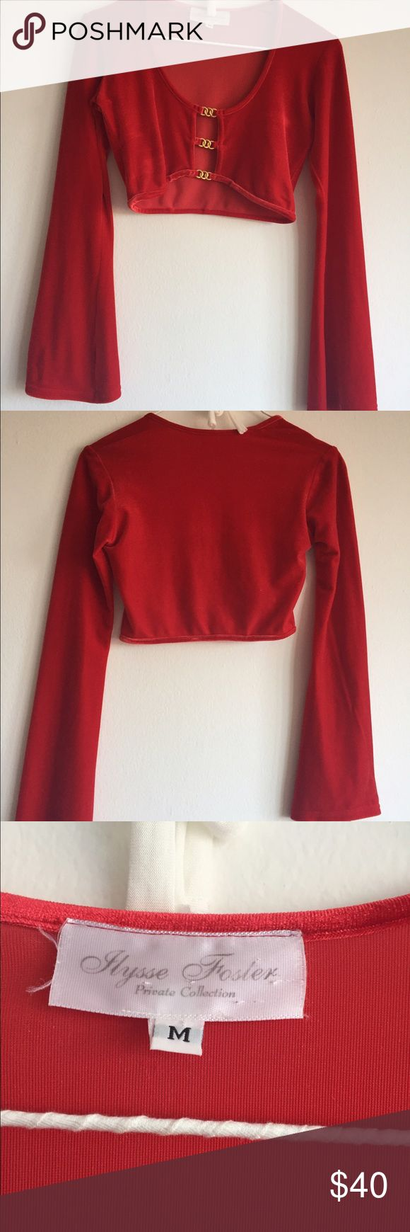 Red long sleeve vintage crop top Amazing throw back. Three gold circles holding the velvety top together. Such an amazing touch, i love the red and gold 😍😍 fits like a glove but keep in mind very short! The sleeves are amazing! Same/next day shipping, firm price and sorry no trades! Buy two items and get 10% off :) alysse foster Tops Crop Tops