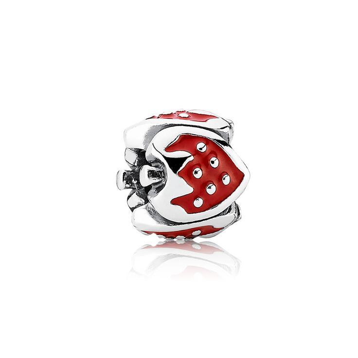 Pandora Jewelry Online Retailers: 1000+ Images About Pandora Charms On Pinterest