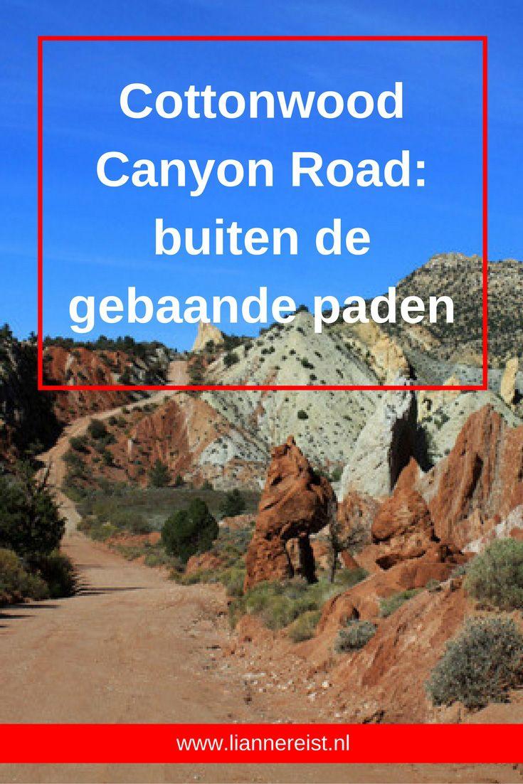 Bryce Canyon is mooi, maar als je even aan de mensen wil ontsnappen neem dan de gravelweg Cottonwood Canyon Road (33 kilometer buiten Bryce Canyon in Utah in de Verenigde Staten). Het rijden is al een avontuur en er zijn diverse wandelingen mogelijk.