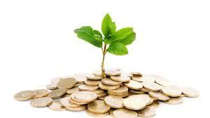 8.Capital semilla: es un financiamiento inicial (fondos que no deben ser devueltos), para la creación de una microempresa o para permitir el despegue y/o consolidación de una actividad empresarial existente.