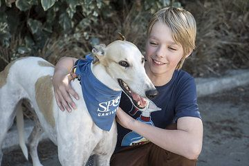 Photo from spca October 2015 collection by EMMA STEEL PHOTOGRAPHY