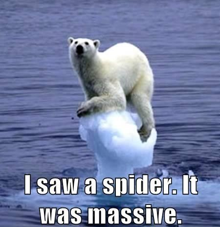 Funny pictures of the day (32 pics)