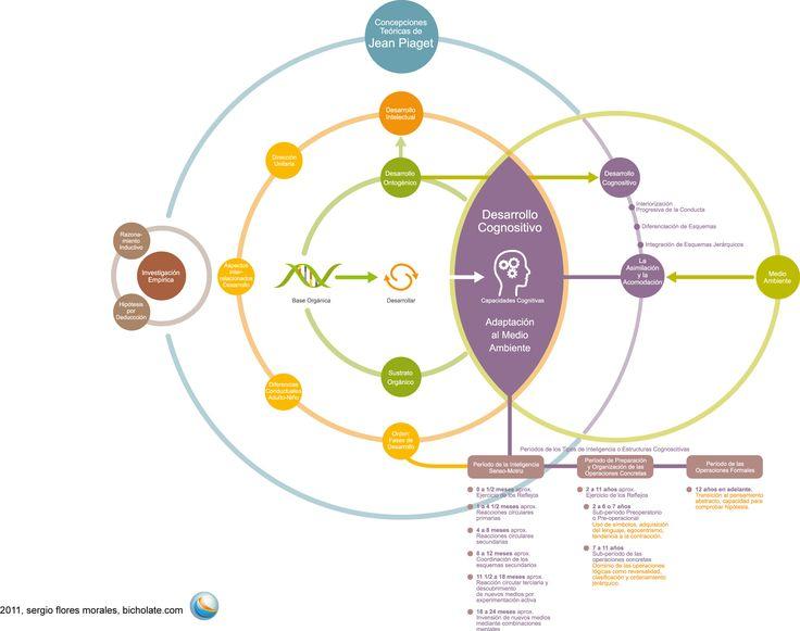 A study on development psychology theories