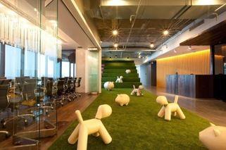kunstgras in een kantoor - kunstgras indoor