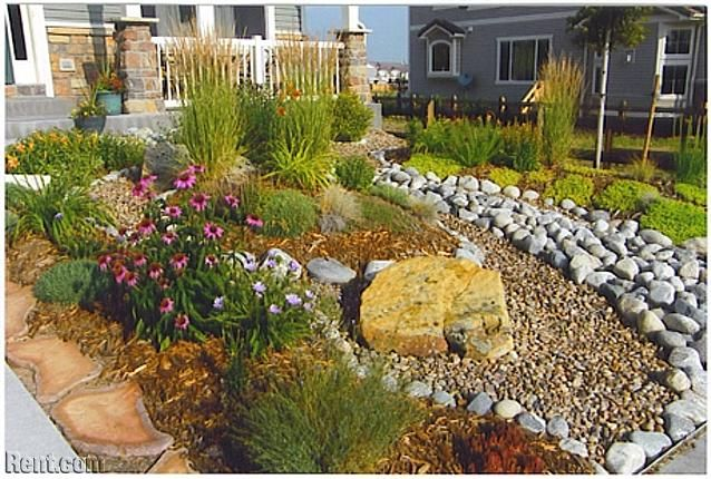xeriscaped front yards | Large 3 Bedroom Ranch in The Meadows - Candleglow St. | Castle Rock ...