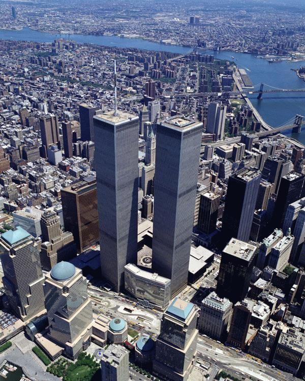 vista general torres gemelas