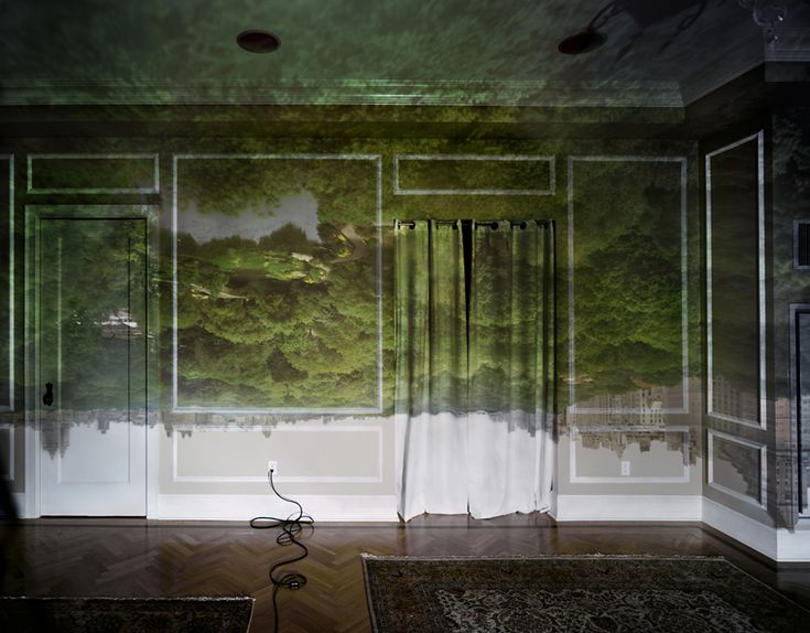 Camera Obscura: View of Central Park Looking North, 2008   Abelardo Morell