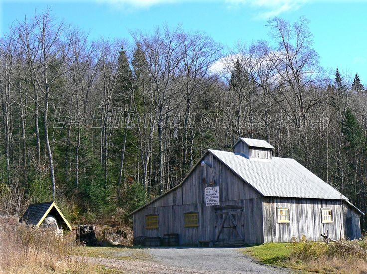 Vieille cabane sur le site de la cabane à sucres du Lac Beauport.