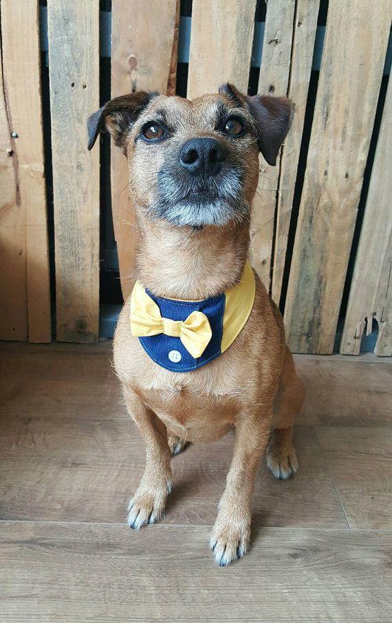 Dog bandana tuxedo wedding outfit https://www.etsy.com/uk - Best 20+ Dog Wedding Outfits Ideas On Pinterest Dog Wedding, Boy