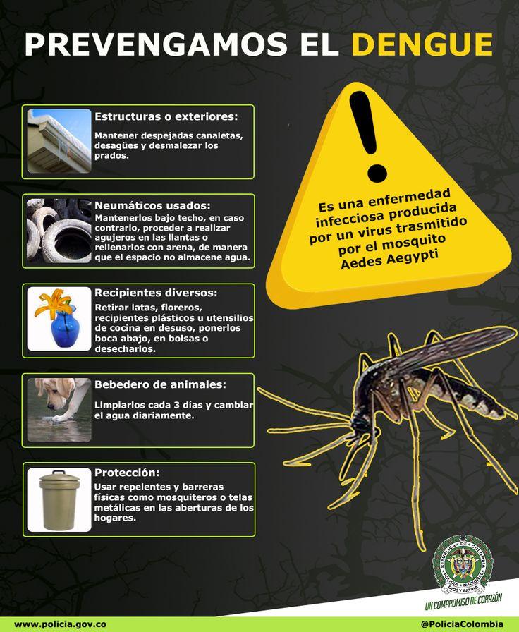 Prevengamos el #Dengue