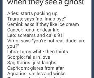 zodiac signs funny - Google Search