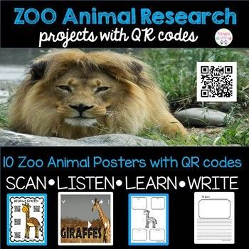 Best Zoo Activities For Kids Images On Pinterest Zoo - 17 zoo animals happy see visitors