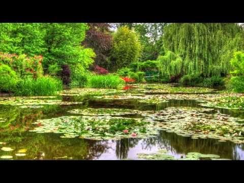 Musica Calma de Meditacao e Relaxamento - 3 Horas de Melodias Tranquilas, Sons da Natureza e Agua - YouTube
