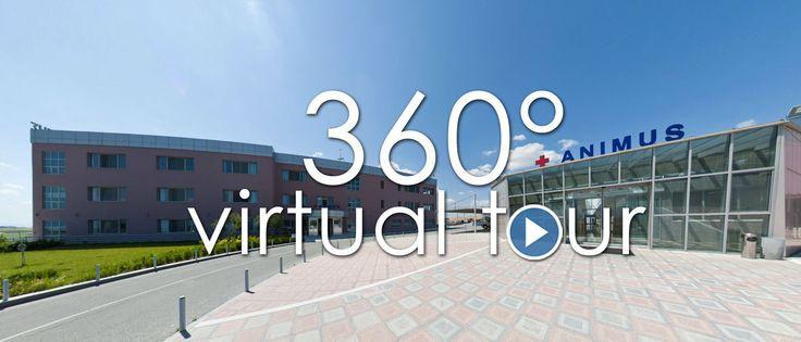 Εικονική περιήγηση στο Κέντρο Αποκατάστασης και Αποθεραπείας ANIMUS. Ακολουθήστε τον σύνδεσμο και περιηγηθείτε εικονικά στο ANIMUS ->http://www.animus.com.gr/fileadmin/anumistour/vt.html