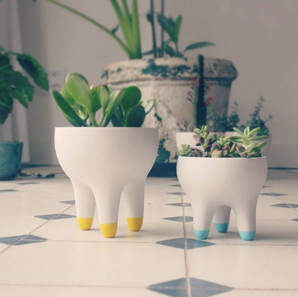 Coleção Raiz, vasos de porcelana Paz! design Raiz Collection, porcelain planters Paz! design