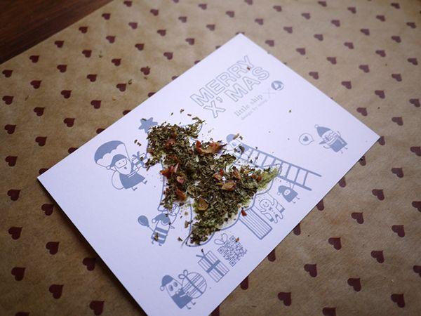 EKdd X'mas Spice Postcard