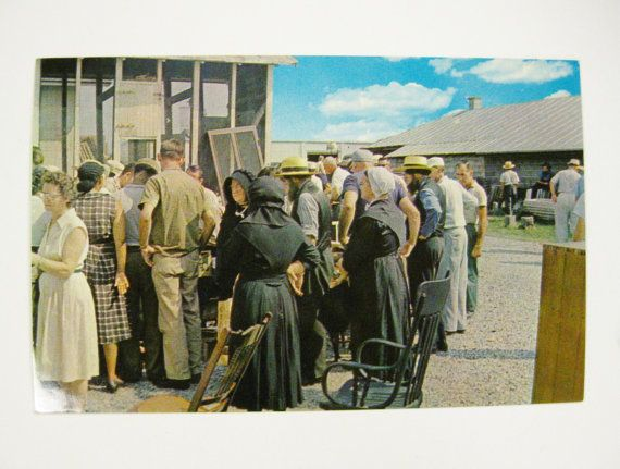 Pennsylvania Dutch Auction Postcard Amish by mainevintagetreasure