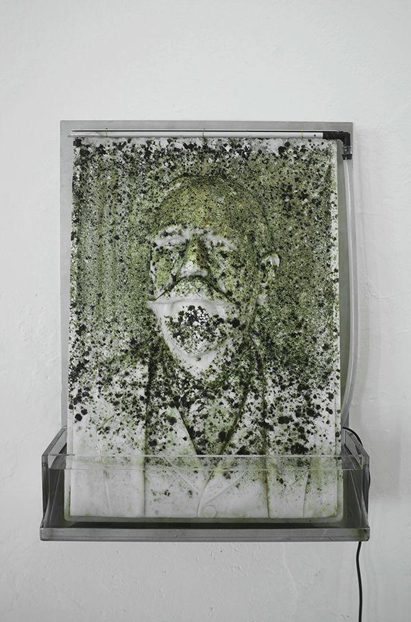Massimiliano Pelletti Moss 2013 Bassorilievo in marmo, acciaio, plexiglass, muschio e sistema idrico 70 x 50 cm