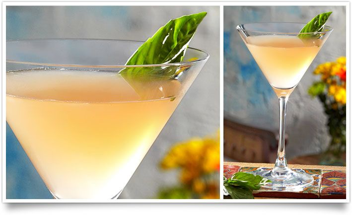 Tommy Bahama's Grapefruit Basil Martini   2 ½ parts Grey Goose® Vodka  1 ¼ parts fresh Ruby Red™ grapefruit juice  ¾ part simple syrup  2 fresh basil leaves    Muddle one basil leaf with simple syrup in a mixing glass. Add remaining ingredients. Add ice. Shake well until chilled. Strain into glass.