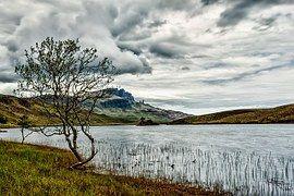 Sky, Clouds, Tree, Waters, Lake, Hole