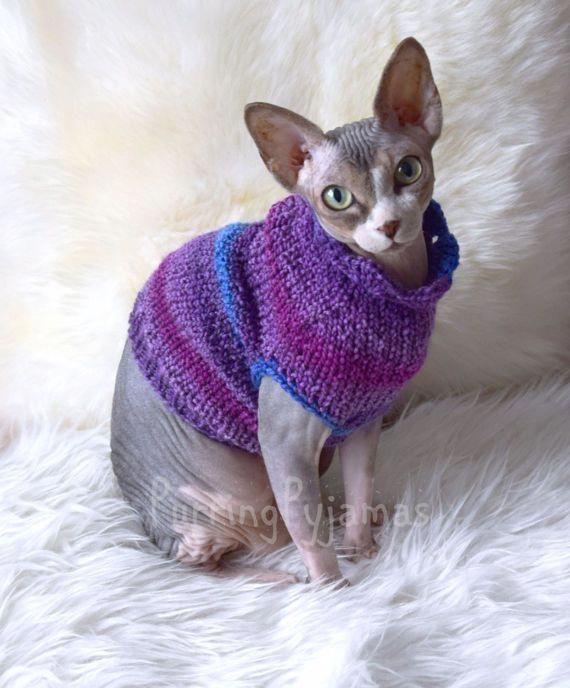 Abiti Per Gatti Vestiti Per Il Gatto Gatto Maglione Sphynx