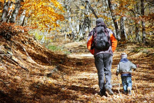 Take a great fall #hike in #Ottawa with a little help from #Timbercreek!