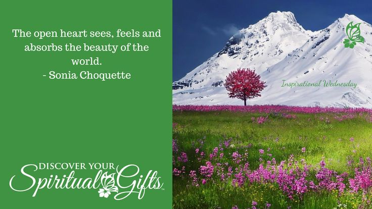"""#InspirationalWednesday - """"The open heart sees, feels and absorbs the beauty of the world."""" Sonia Choquette"""