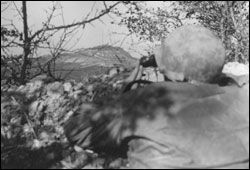 Capt. Gayle Stockdale of B Company in a foxhole observing the effects of artillery fire on Mt. Delle Formiche, 6 October 1944. The Germans were using Mt. Delle Formiche in defense of Highway 65. The official caption on the back of the original photo states that it was taken at Borgo di Bisano, but in reality it was taken from Monte Bibele near Quinzano. Foxholes can still be found on Monte Bibele. (Official U.S. Signal Corps photo).