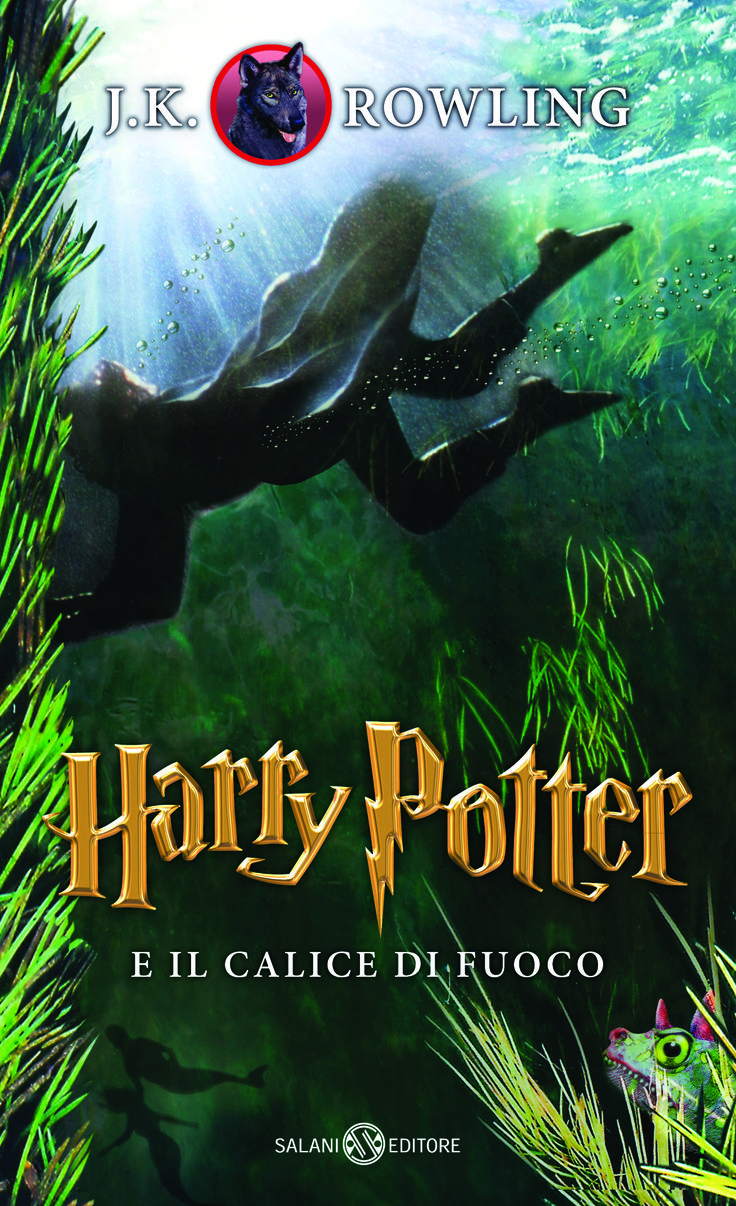 Harry Potter e il calice di fuoco  --  Harry Potter and the Goblet of Fire    # 4
