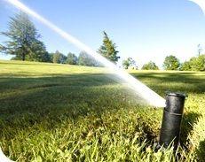 Wihebrink Landscape Management, Inc. is Your Complete Landscape & Irrigation Company providing landscape and irrigation related services