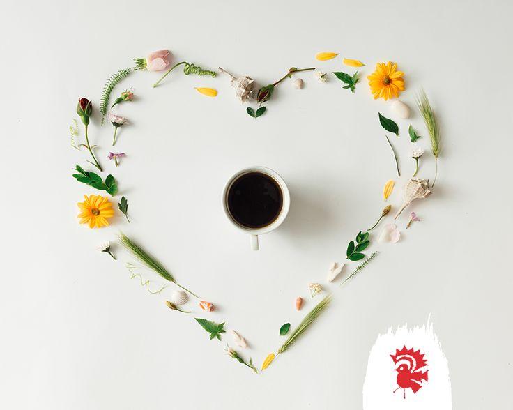 Heartwarming coffee without the burn! #coffee #lowAcid #healthyfood