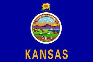 Kansas Flag (for lesson plan graphic)
