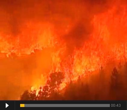 Se video fra skovbrandene i Portugal, 2012, på dr.dk