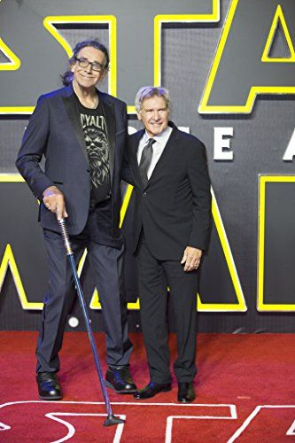 Harrison Ford and Peter Mayhew at an event for Star Wars: Episode VII - The Force Awakens (2015)