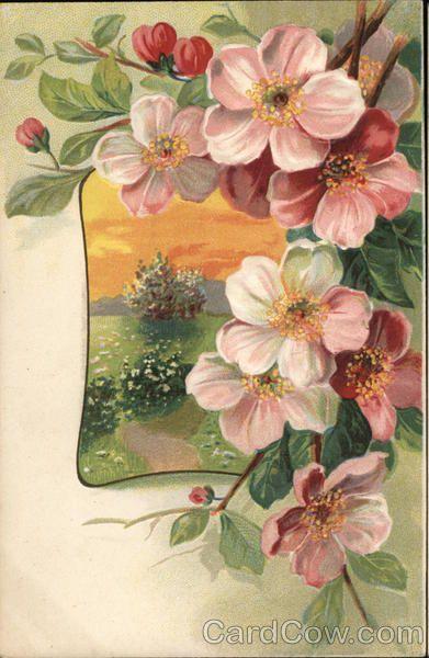 Beautiful Flowers G. A. Novelty Art Series 1313