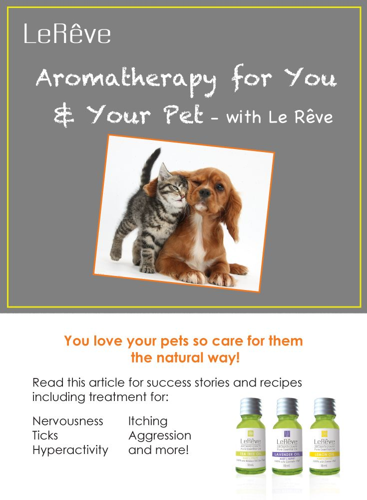 Aromatherapy for you and your pet - with Le Reve. Care for your pets the natural way! Includes essential oil success stories and recipes including treatment for nervousness, itching, hyperactivity, ticks, aggression and more!  Read the article: http://www.aromatherapy.net.au/aromatherapy-for-you-and-your-pet-with-le-reve/