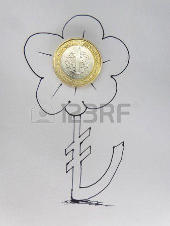 Flower Symbol and Turkish Lira