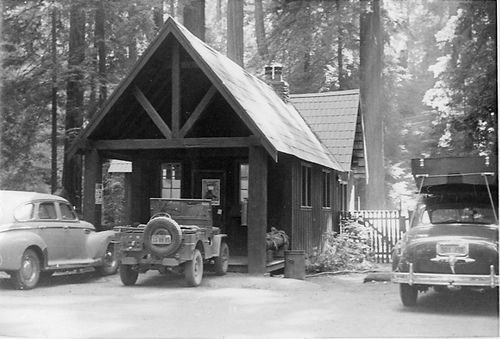 Pin by CA State Parks on Richardson Grove State Park