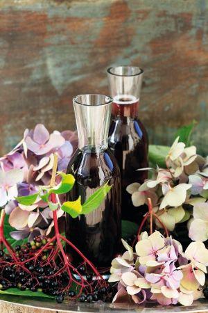 Opojná vôňa bazových kvetov a bobúľ neláka len hmyz a vtáky. Aj my si vezmeme to, čo nám príroda ponúka...