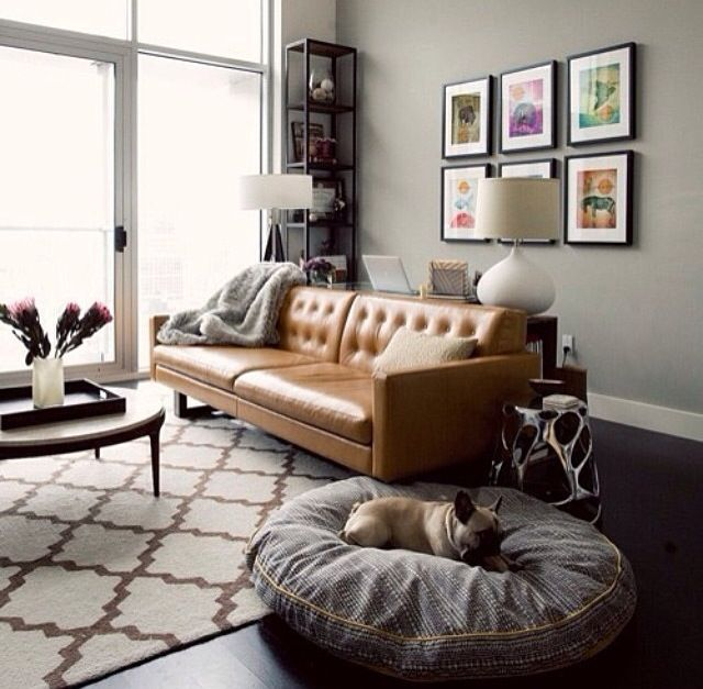 Chesterfield tan couches and frenchies.