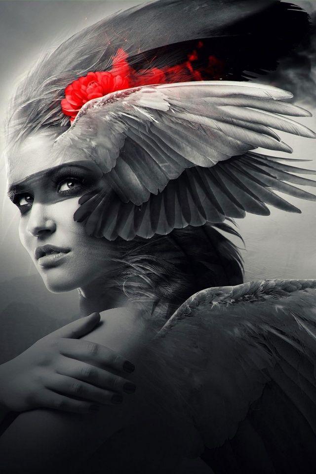 640-Wings-Angel-l                                                                                                                                                                                 Mais