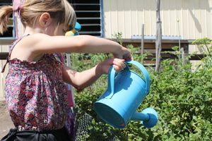 Chores for a little helper