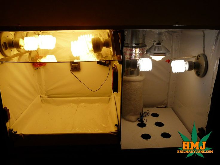 Grow box is done