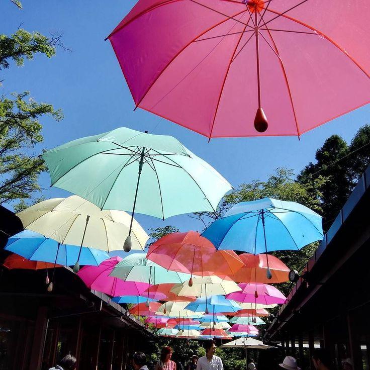 """中軽井沢ハルニレテラスの傘のアーケードアンブレラスカイ2017 The arcade of the umbrella in Karuizawa Japan. """"The Ambrella sky 2017""""  #軽井沢#ハルニレテラス#アーケード#星野リゾート#アンブレラスカイ#100パーセントプロジェクト#100percentproject#ambrella #sky  #color #karuizawa"""