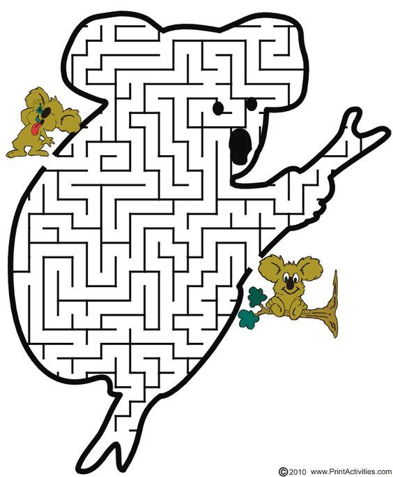 Koala Maze Help the koala thru the maze to find its friend Games