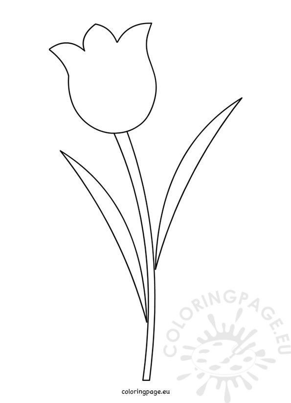 Tulip Flower Template Printable Flower Templates Printable